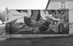 poštovní holub - graffiti